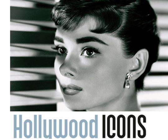 mostra hollywood icons