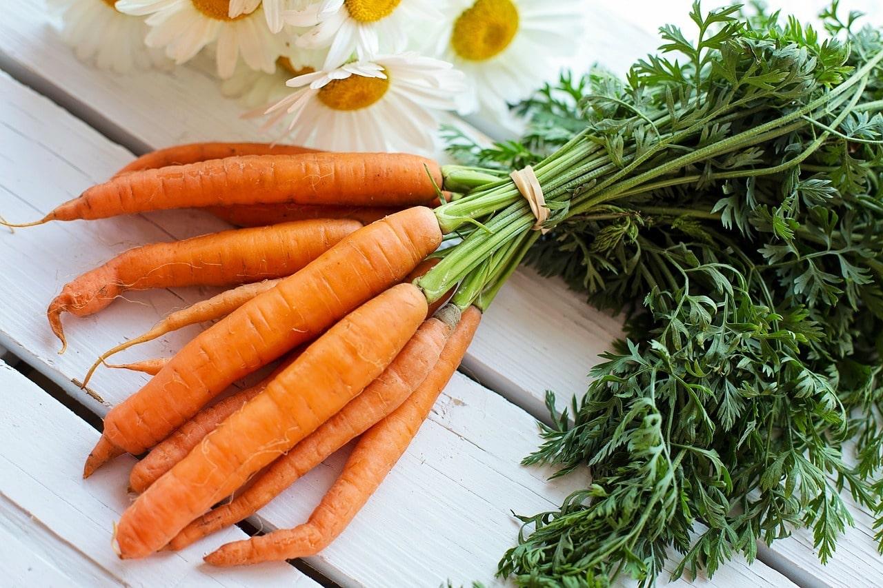 come preparare la pelle all'abbronzatura ricette con carote