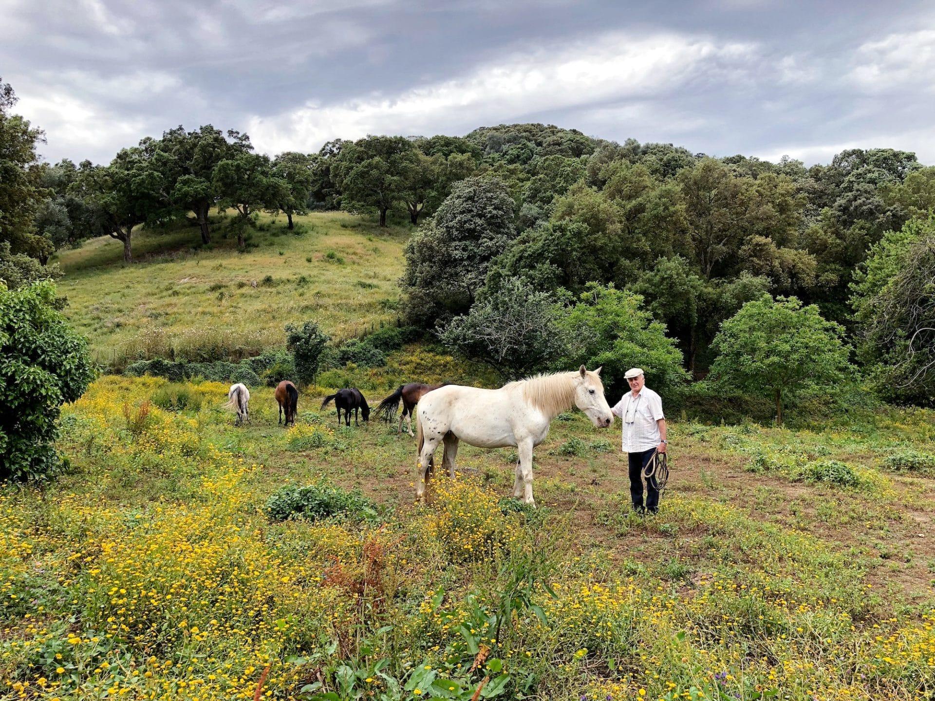 andare a cavallo in Corsica