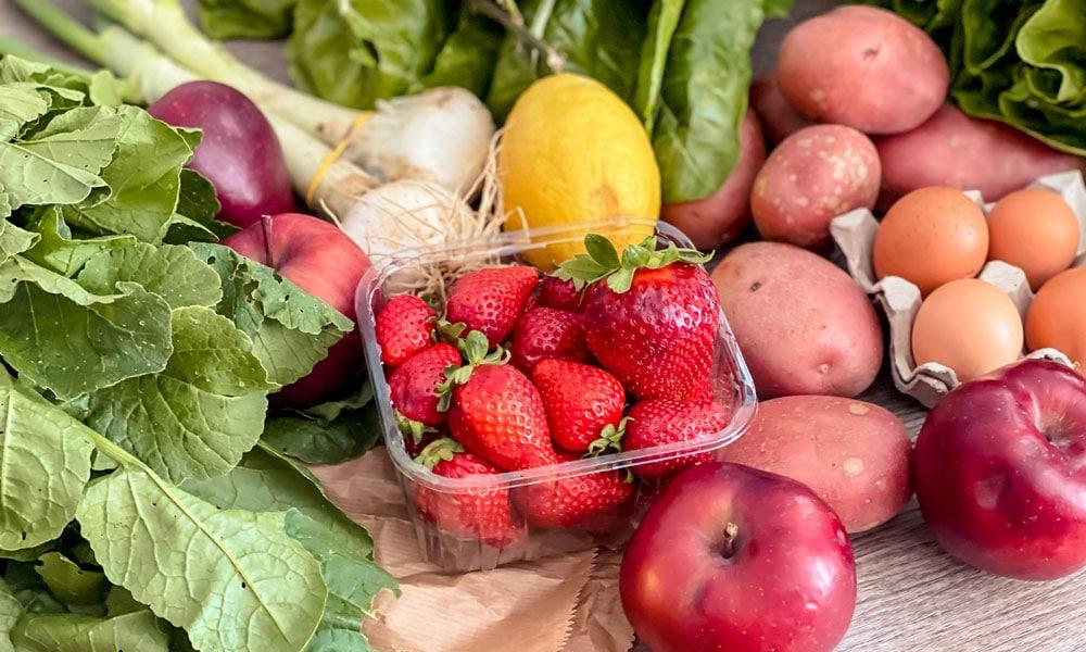 VerdiFrutta frutta e verdura biologiche a domicilio