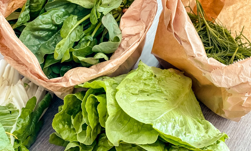 verdure biologiche chilometro zero verdifrutta