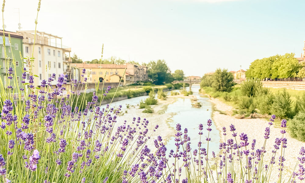 Weekend a Parma cosa vedere